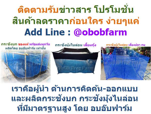 แนะนำอุปกรณ์เลี้ยงกบ เลี้ยงปลา สำหรับเกษตรกรที่ต้องการอาชีพเสริม ลงทุนน้อย